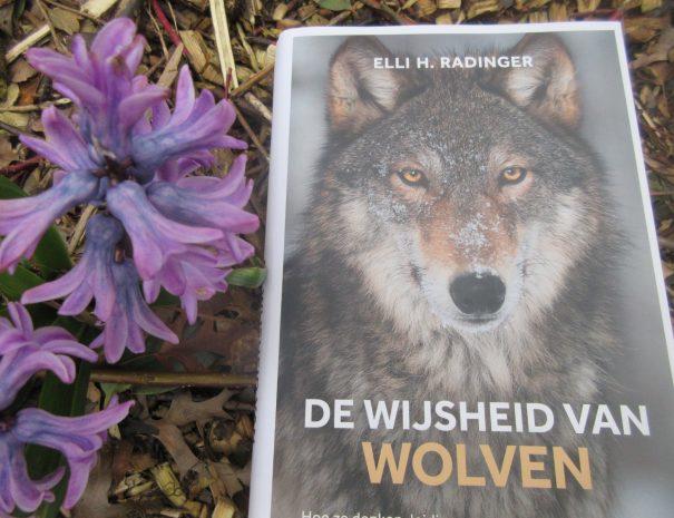 Van wolven leren over mens zijn #boekenwijsheid